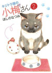 キジトラ猫の小梅さん(2)