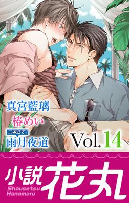 小説花丸 Vol.14-電子書籍