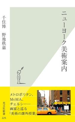 ニューヨーク美術案内-電子書籍