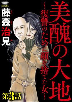 美醜の大地~復讐のために顔を捨てた女~(分冊版)私は特別 【第3話】-電子書籍