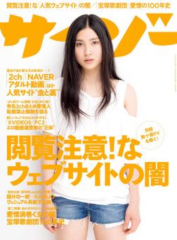 サイゾー2014年5月号-電子書籍