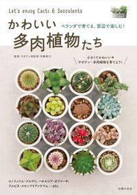 かわいい多肉植物たち