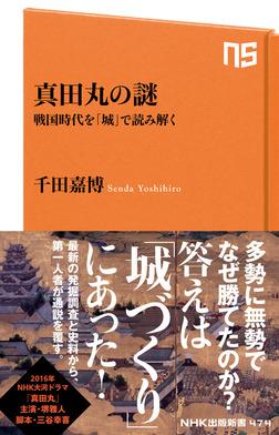 真田丸の謎 戦国時代を「城」で読み解く-電子書籍
