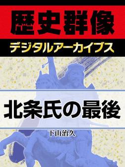 北条氏の最後-電子書籍