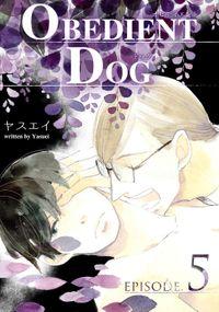OBEDIENT DOG 5