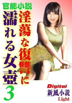 【官能小説】淫蕩な復讐に濡れる女壺03-電子書籍