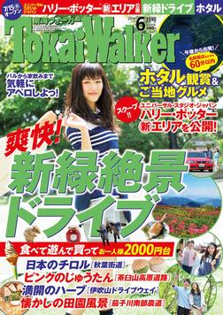 TokaiWalker東海ウォーカー 2014 6月号-電子書籍