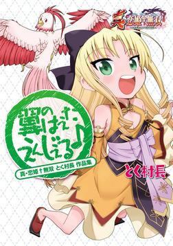 真・恋姫無双 とく村長 作品集 翼のはえたえんじぇる♪-電子書籍