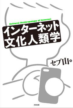 インターネット文化人類学-電子書籍