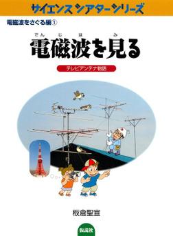 電磁波を見る テレビアンテナ物語-電子書籍