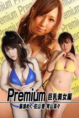 Premium 巨乳美女編 藤浦めぐ・佐山愛・青山菜々-電子書籍