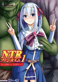 NTRファンタズム 1 敗北姫騎士と巨根オーク