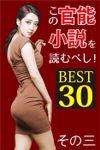 この官能小説を読むべし! BEST30 その三