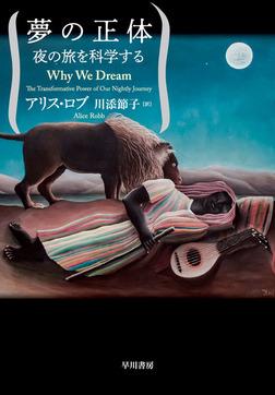 夢の正体 夜の旅を科学する-電子書籍