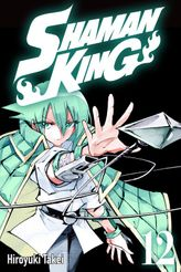 SHAMAN KING 12