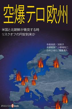 空爆・テロ・欧州-電子書籍