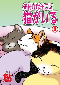 気付けばそこに猫がいる3-電子書籍