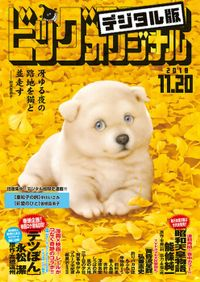 ビッグコミックオリジナル 2018年22号(2018年11月5日発売)