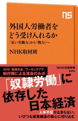 外国人労働者をどう受け入れるか 「安い労働力」から「戦力」へ-電子書籍