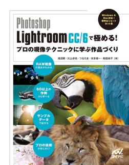 Photoshop Lightroom CC/6で極める! プロの現像テクニックに学ぶ作品づくり-電子書籍