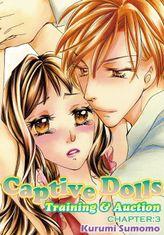 Captive Dolls - Training & Auction, Chapter 3