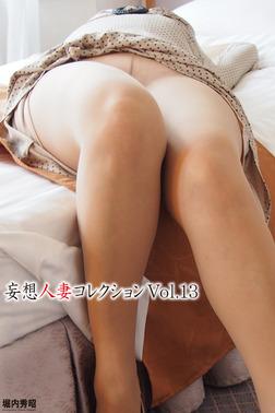 妄想人妻コレクションVol.13-電子書籍