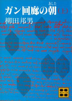 ガン回廊の朝(あした)(上)-電子書籍