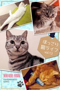 ほっこり猫ライフ vol.13