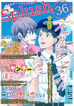 Splush vol.36 青春系ボーイズラブマガジン-電子書籍