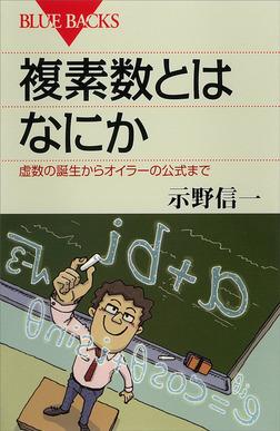 複素数とはなにか 虚数の誕生からオイラーの公式まで-電子書籍