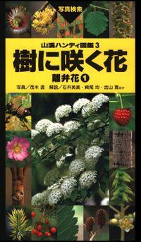 ヤマケイハンディ図鑑3 樹に咲く花 離弁花①