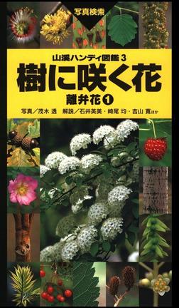 ヤマケイハンディ図鑑3 樹に咲く花 離弁花①-電子書籍