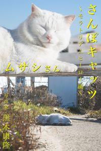 さんぽキャッツ ムサシさん ~モラトリアムヒーロー編~