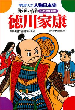 徳川家康 関ケ原の合戦-電子書籍