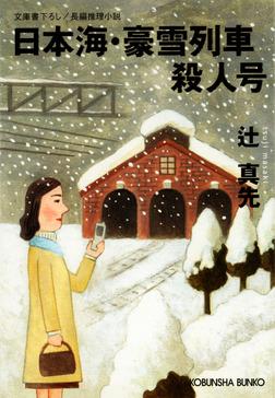 日本海・豪雪列車殺人号-電子書籍