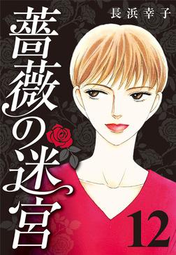 薔薇の迷宮 ~義兄の死、姉の失踪、妹が探し求める真実~ (12)-電子書籍