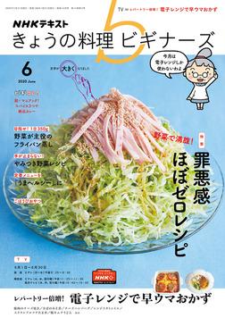 NHK きょうの料理 ビギナーズ 2020年6月号-電子書籍