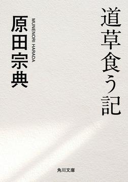 道草食う記-電子書籍
