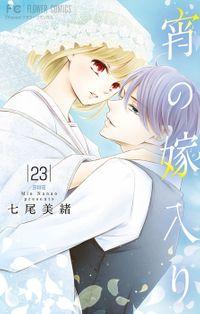宵の嫁入り【マイクロ】(23)