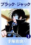 【30%OFF】ブラック・ジャック【全22巻セット】