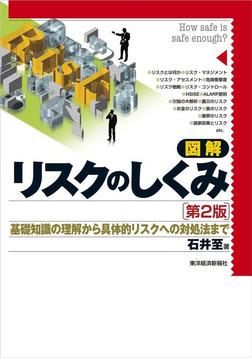 図解 リスクのしくみ(第2版) 基礎知識の理解から具体的リスクへの対処法まで-電子書籍
