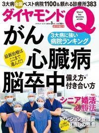 ダイヤモンドQ 創刊準備3号