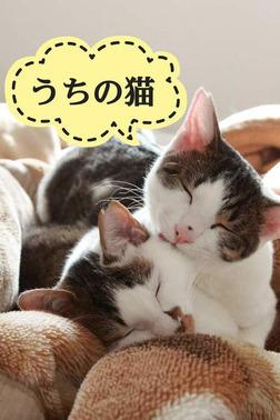 うちの猫-電子書籍