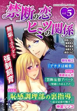 禁断の恋 ヒミツの関係 vol.5-電子書籍