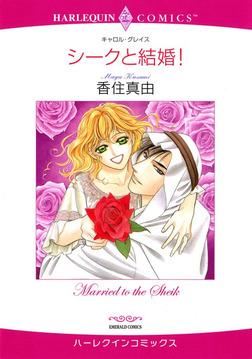 シークと結婚!-電子書籍