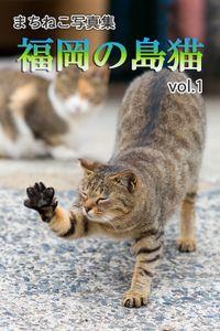 まちねこ写真集・福岡の島猫 vol.1