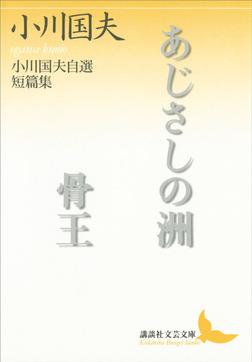 あじさしの洲 骨王-電子書籍