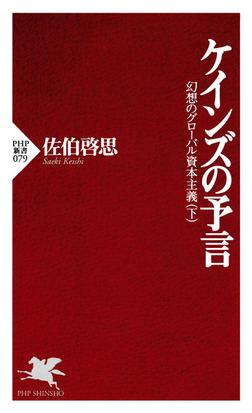 ケインズの予言 幻想のグローバル資本主義(下)-電子書籍