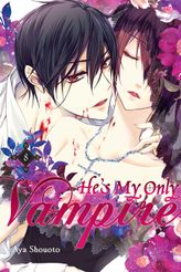 He's My Only Vampire, Vol. 8