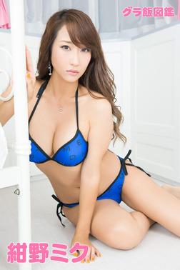 紺野ミク グラ飯図鑑-電子書籍
